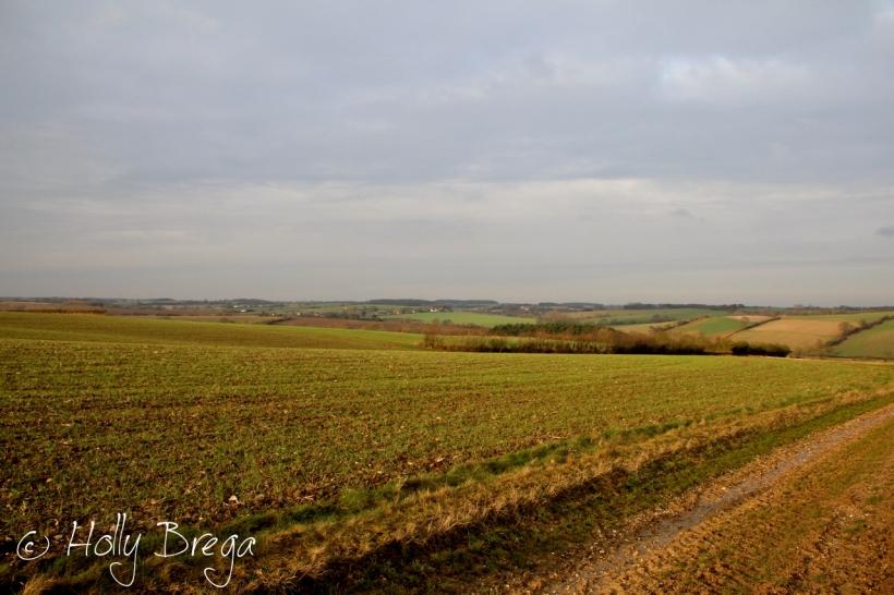 Footpaths in Suffolk
